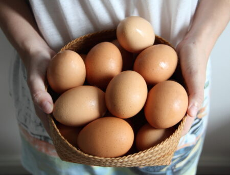 How Many Eggs Your Basket Dealing with infertility Comparison